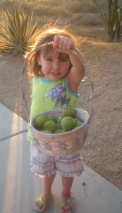 Little Miss with last year's harvest of the day.